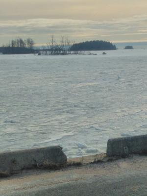 Skärgårdsenhetens Pelle Åker  tog en bild av skarvarnas ö från Långrörs oljehamn.
