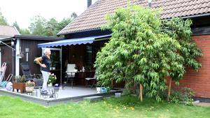 Persikoträdet växer intill uteplatsen, och doftar via omkring.