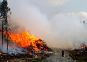 En yta motsvarande 20 000 fotbollsplaner brann i Västmanland 2014.Foto: Alexandra Sannemalm