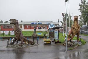 Ägaren till Frösö zoo vill lägga ner verksamheten och har ansökt om planbesked för att istället bygga bostäder och exempelvis en förskola på marken.