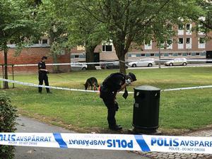Det var strax före tre på måndagsnatten  som polisen larmades till Karl Johan-parken där en 56-årig man hittades död.