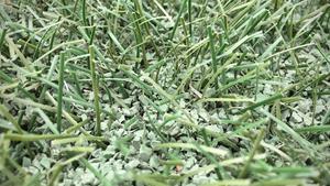 Konstgräs med grön granulat av TPE-typ, tillverkad av naturgummi.  Så här ser det ut i de nyare lagningarna vid  bland annat målgården. På resten av den utslitna planen finns i stort sett inga strån kvar.