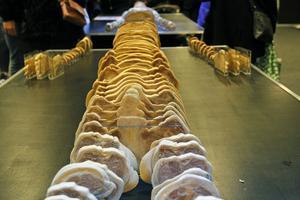Här visas hela människokroppens uppbyggnad.