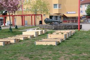 Tretton odlarenheter står nu i Stadsparken i Nynäshamn. Några enkla och några dubbla pallkragar och alla är nu paxade av nynäshamnare.