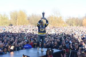 HV:s SM-guld är en del av ett framgångsrikt sportår i Jönköping.