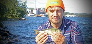 Magnus Karlsson hos IVL  har kartlagt farliga ämnen i abborrar utanför massafabrikerna vid länets kust.