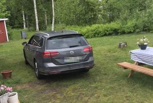 Bilen hittades på en sommarstugetomt i Armsjön av Albin Bovin och tre av hans kompisar. Bild: Albin Bovin