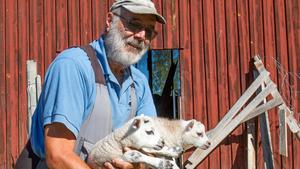 – Det hänger ihop mer än vad många tror. Nu behövs regn. Under spannmålskörden behövs bra väder, dels för att få in spannmålet och dels för att få halm till mjölkbönderna, säger Erik Brate.