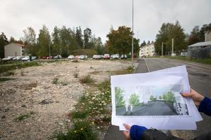 Längs med Brolundavägen ska det bli fler hus och just här kan det bli ett punkthus med 10 våningar och ett litet torg.