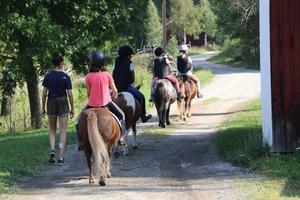 Att få rida på Lindberga gårds olika hästar var populärast bland lägerdeltagarna.