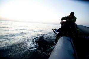 Försvarsmakten har röjdykare och arbetsdykare, samt ett par andra titlar. Röjdykare (som på bilden) jobbar mest med att bärga oexploderad ammunition och liknande. Arbetsdykarna sysslar med med att exempelvis inspektera fartygsskrov. Foto: Fj Alexander Karlsson /Försvarsmakten/TT