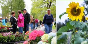 Fler kommuner sade nej till att bekosta vuxenutbildningen i trädgård på Nordviksskolan. Där hoppas man på ett nytt försök till hösten.