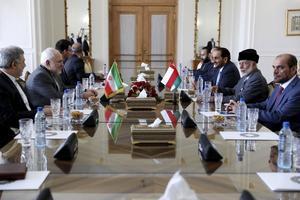 Möte om situationen i Persiska viken mellan Irans och Omans utrikesministrar i Tehran i juli. Foto: Ebrahim Noroozi/AP