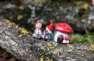 Grönt är skönt, men innan du går ut och plockar mossa och hugger granris måste du ha ett godkännande från markägaren. Även krokiga pinnar, kottar och stenar kan skapa julstämning. Foto: Lennye Osbeck