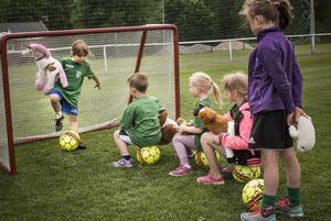 Både enhörningar och sälar får vara med att spela fotboll på Marmavallen.