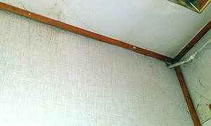Miljöinspektörerna konstaterade att rengöringen i allmänhet rejält eftersatt i samtliga utrymmen. Spindelväv fanns i flera utrymmen.