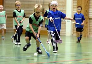 Samlad träning. Det här laget tränade förut i Brotorpsskolan, men nu har de flyttat över till Stadsskogsskolan där alla innebandylag tränar från och med nu.Arkivbild: Göran Kempe