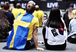 Fotbolls-VM. Foto: Erik Simander/TT