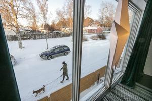 Vid det stora fönstret ut mot Tannhöjdsvägen sitter ofta hunden Bella och tittar ut.