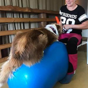 Enligt Ida älskar hennes egna hundar träningsformen. På bilden syns hennes egen australian shepherd Nellie.