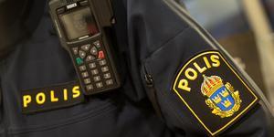 Mannen greps av polis då han ska ha misshandlat en man i Hedemora.