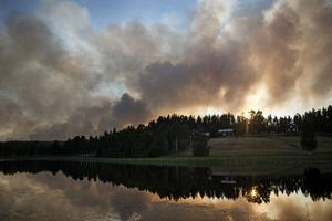 Brattsjöbranden är en av skogsbränderna som har härjat i Sverige under den senaste tiden.