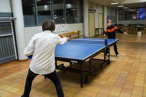 I Centrumvillan i Granloholm spelar bröderna Linus och Ante Lundgren pingis.