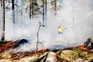 Skogen brinner inte bara vid naturliga skogsbränder utan på vissa områden med höga naturvärden görs sp kallade naturvårdsbränningar där man med avsikt startar en skogsbrand och bränner av området för att gynna vissa arter av växter och djur.