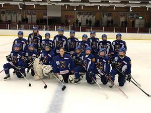 Foto: Svenska ishockeyförbundet.
