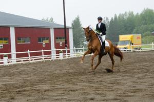 Deltagarna kom från ett femtontal klubbar i Jämtland, Västernorrland och Västerbotten.