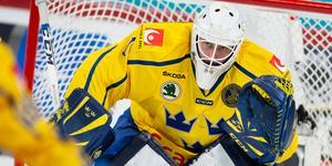 Jhonas Enroth blir en av tre målvakter i VM. Bild: Tomi Hänninen/Bildbyrån