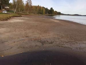 De runt Åsbackaviken hade aldrig blivit påverkade om kraftverket försvunnit, men däremot kommer miljön fortsätta att förstöras i Galvsjön för djur och människor, skriver insändaren.