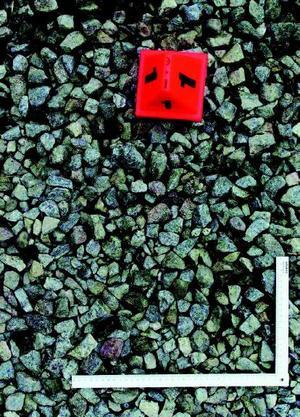 En blodpöl på omkring 50 gånger 50 centimeter hittades på gårdsplanen. Den var täckt med grovgrus, och hade även sjunkit ned en decimeter i marken. Åklagaren menar att 22-åringen försökt skölja bort blodet med vatten.Foto: Polisens förundersökning