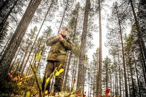 Skogen med de mer än 100 gamla tallarna i Lofsdalen; vad ska staten betala för att den blev naturreservat?