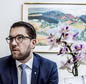 Stark misstro mot EU och samhälleliga institutioner förenar de landsbygdsväljare som röstar på SD och Jimmie Åkesson.
