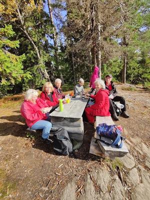 Högst uppe på Honingsberget intogs matsäcken av Birgitta, Marianne, Bengt, Ann-Christin, Bo, Ulla och Gertrud (bakom kameran). Foto: Gertrud Hedberg