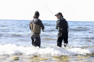 Kronprinsessan Victoria fiskar under sin landskapsvandring på Gotland. Foto: Sören Andersson / TT