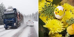 Om resan går upp till fjällvärlden bör du överväga att behålla vinterdäcken på, skriver Ove Sundström på NTF Västernorrlands äldreråd.