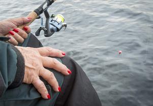 Fjällorna, en fiskesammanslutning för damer. Foto: Mikael Forslund