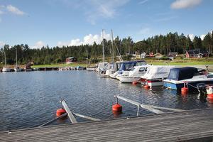 Under helgen har det synts blågröna alger i hamnbassängerna i Mellanfjärden.