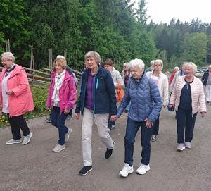 Promenad i Tyresta. Foto: Inga Burebo Karlsson