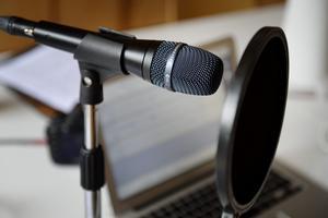 Naturvårdsverket har betalat 470 000 kronor för fyra podcastavsnitt. Arkivbild.Foto: Jessica Gow/TT