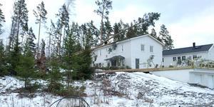 På Björnö i Norrtälje blåste tallar omkull över hus.