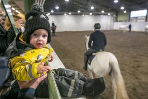 1,5-åriga Glimma Bergsten var en av ett par hundra besökare, och en av dem som tittade på häst- och riduppvisningen i ridhallen.