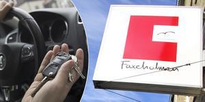 Totalt ska sex bilar ha sålts av Faxeholmens tidigare vd Gabriel Larsson.