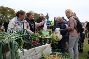 Ekologiska grönsaker odlade på en gård bara några kilometer från bygdegården.