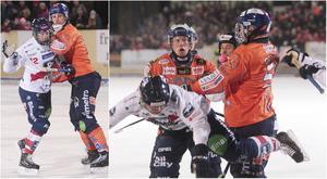 Bollnäs och Edsbyn har delat poängen i grundserien, där båda lag vunnit sina matcher på bortais.