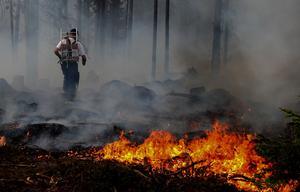 Skogsbranden i Vännebo, 2008. Foto: Peter Ohlsson.