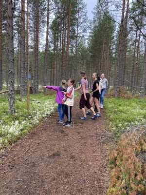 """Efter stigen finns det både träningsstationer och små """"filurer""""att upptäcka. Fotograf: Maj-Lis Wikström"""
