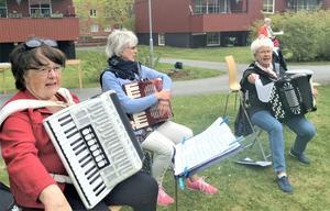 Jämtbälgsdamer med ordförande Harriet Svaleryd närmast kameran. I mitten Birgitta Borg och till höger Ann Britt Klingberg. Foto: Åke Bengtzon